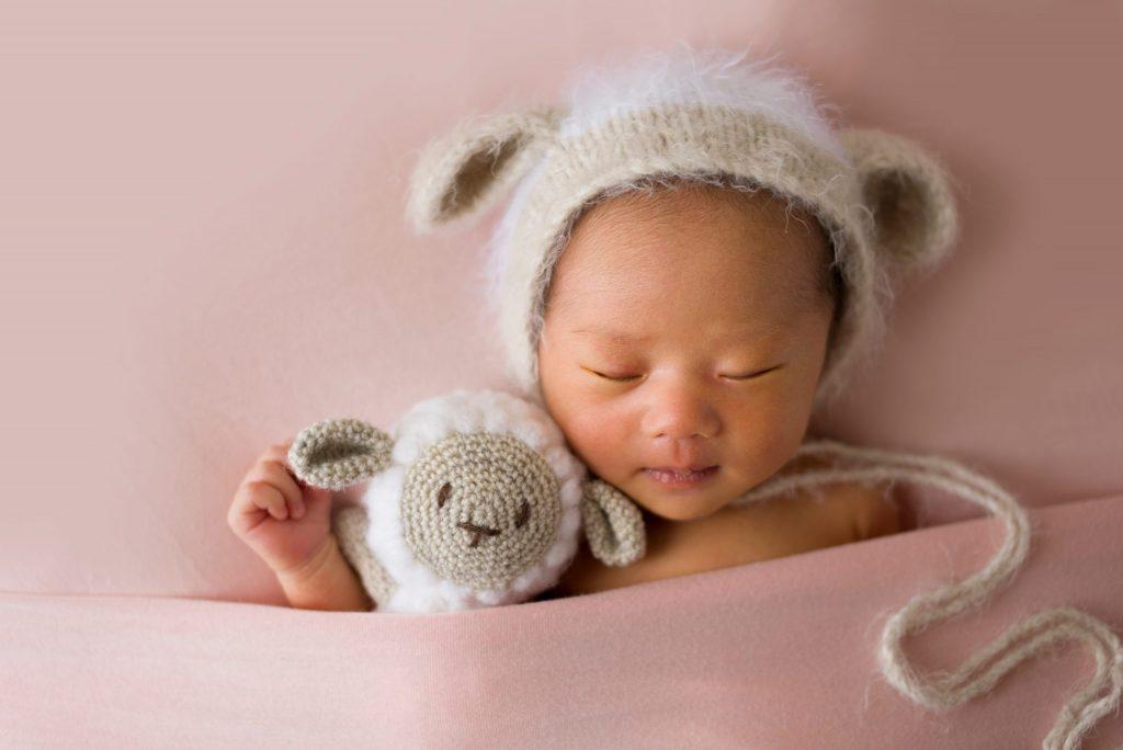 羊の小物と帽子+ピンク背景(名古屋ニューボーンフォト)